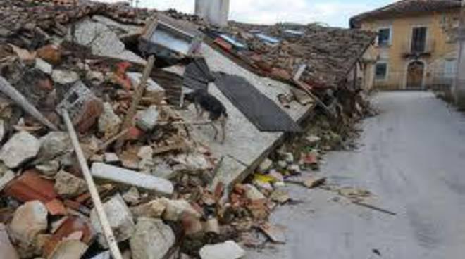 Terremoto: aggiornamenti on line su rimozione macerie
