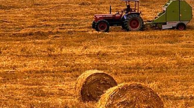Agricoltori aquilani: 'De Fanis assente'