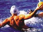 L'Aquila Nuoto, finisce il sogno