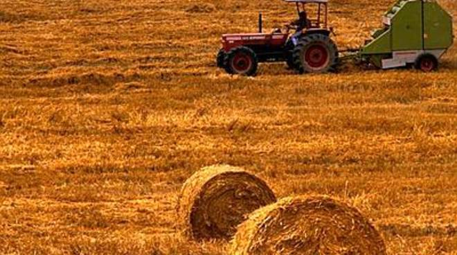 'Pagare indennità alle aziende agricole e zootecniche'