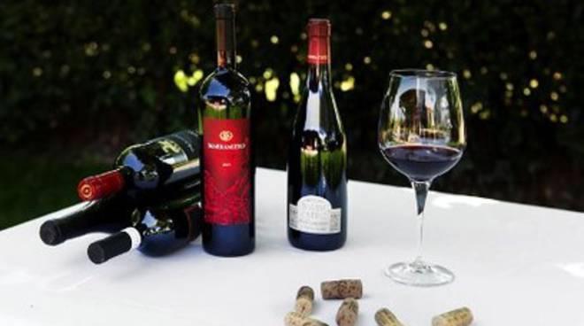 Giornalisti in tour in Abruzzo per conoscere il vino