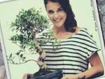 Tornano in piazza i bonsai della lotta all'Aids