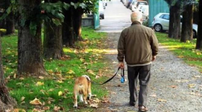 Per un cane grosso,  ci vuole un grosso padrone