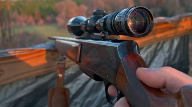 Cervo ucciso, fermati 2 bracconieri