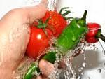 Sicurezza alimentare, «Giunta disciplina controlli»
