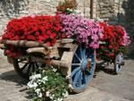 Comuni fioriti, la giuria del concorso nazionale in Abruzzo