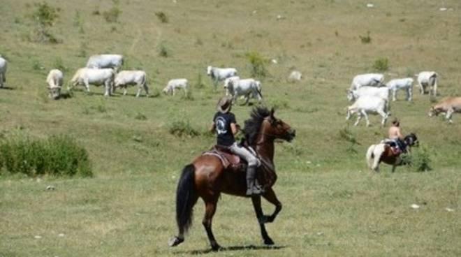 Trekking a cavallo ad Arischia