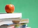 Capistrello, «la scuola media è agibile»