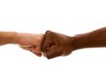 «Che fa la Provincia contro il razzismo?»
