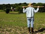 Credito agrario, Febbo: «In esame nostre tesi»