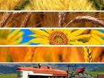 Agroalimentare, Regione in prima linea contro truffe