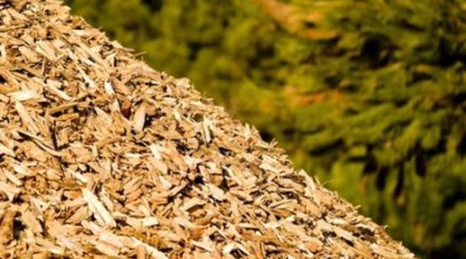 Centrale a biomasse, continua la battaglia