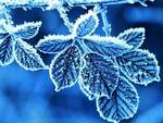 Arrivano gelo e neve, crollo temperature