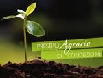 Regione, 750 mila euro per prestiti aziende agricole