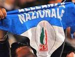Alleanza nazionale, «Diffidare dalle 'imitazioni'»