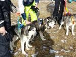 Cadono in acqua gelata, salvati 2 aquilani e 12 cani