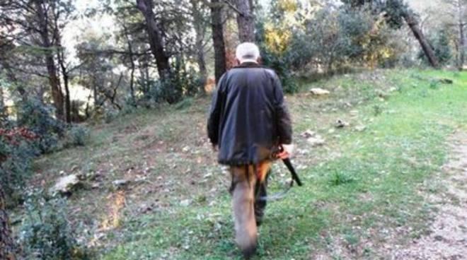 Cerva uccisa, bracconieri all'assalto