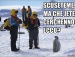 Aquilani, sicuri di parlar bene l'italiano?