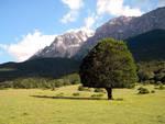Parco Abruzzo, nomina presidente vicina
