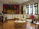 Formiche invadono una scuola per l'infanzia