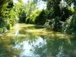 Presutti: «Ma quale L'Aquila-Amatrice, si pensi ai fiumi»