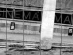 Il Cinema Massimo riapre il botteghino