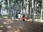 Il polmone verde d'Avezzano più adatto ai camper