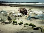 Vacanze in Italia, stesso mare e stessa spiaggia (inquinata)
