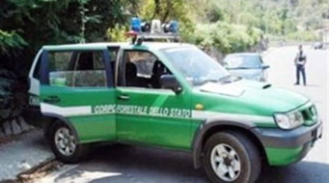 Droga, arresti a cascata fra L'Aquila e la Marsica