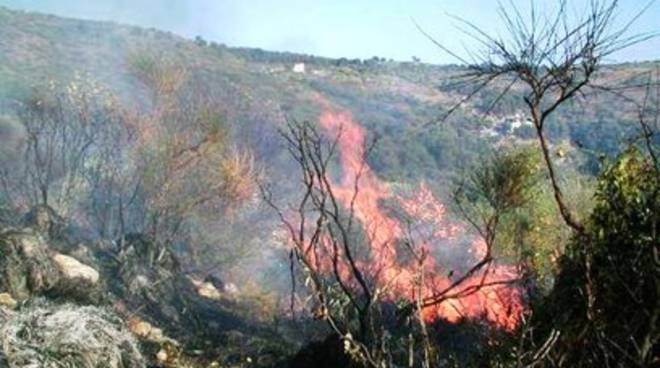 Incendi boschivi, Regione in modalità autotutela