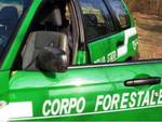 Ritrovato l'ex forestale scomparso