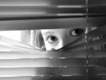 Caso di stalking a Lanciano, un arresto