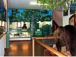 Rapporto uomo-natura, un Museo per celebrarlo