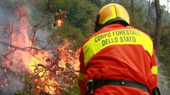 Roghi in Italia, Forestale ne spegne 26