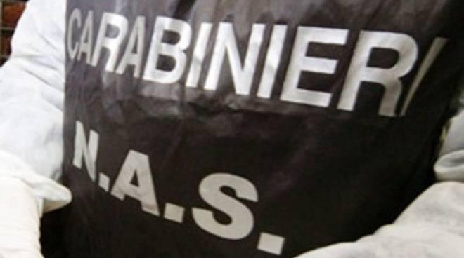 Doping, 4 famosi body builder nel giro di farmaci illegali