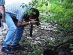 Indagato delitto orso, Lav 'scopre' altri reati