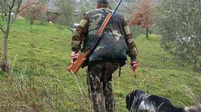 Orso morto, Lav: «Si blocchi la stagione della caccia»