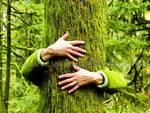 Festa dell'albero 2014, un grande abbraccio dall'Aquila