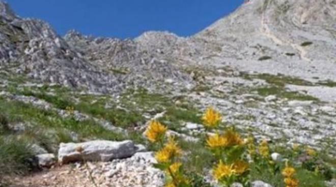 Parchi, Di Matteo: «Tagliare Cda Sirente-Velino»