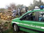 Tagliacozzo, denunce e quintali di legna sotto sequestro