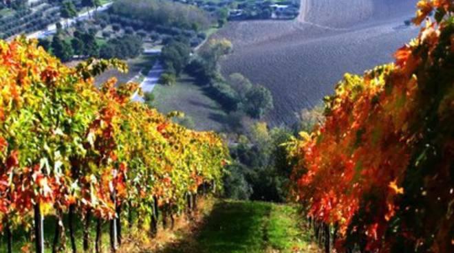 E' Abruzzo