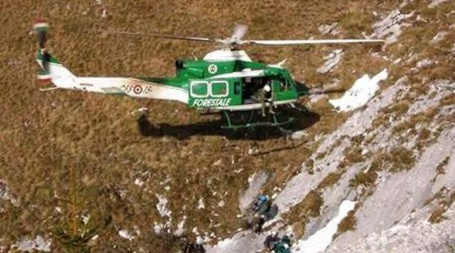 Maltempo Abruzzo, animali isolati soccorsi in elicottero