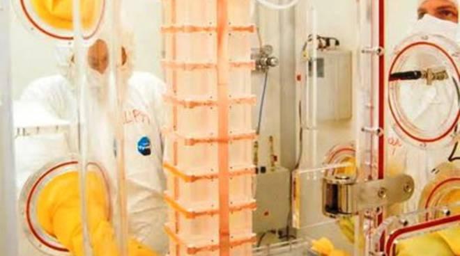 'Cuore' mette alle strette il neutrino di Majorana