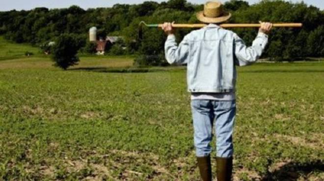 Nell'Aquilano i giovani scelgono l'agricoltura