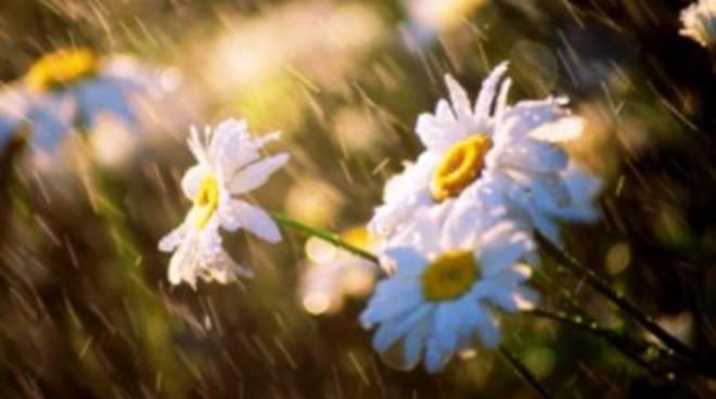 Tempo, la primavera è solo un ricordo