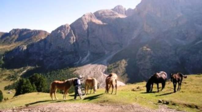 Turismo sostenibile, l'Abruzzo punta su una coppia verde