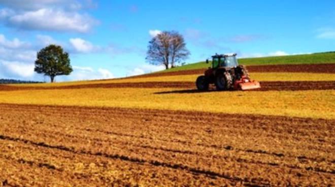 Agricoltura in Abruzzo, c'è ancora tempo per assicurare il raccolto