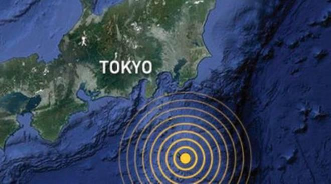 Giappone: terremoto 8,5