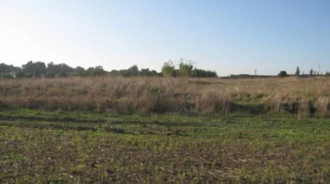 Banca dati dei terreni incolti d'Abruzzo