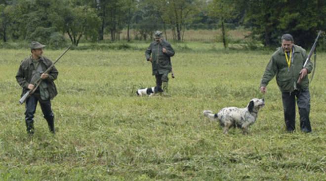 Caccia e tutela orso, Fi: «Da Regione scelte rischiose»